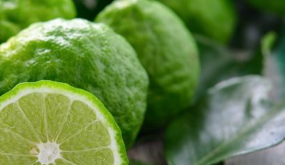 Bergamot-Essential-Oil-Uses-Benefits-and-Recipes