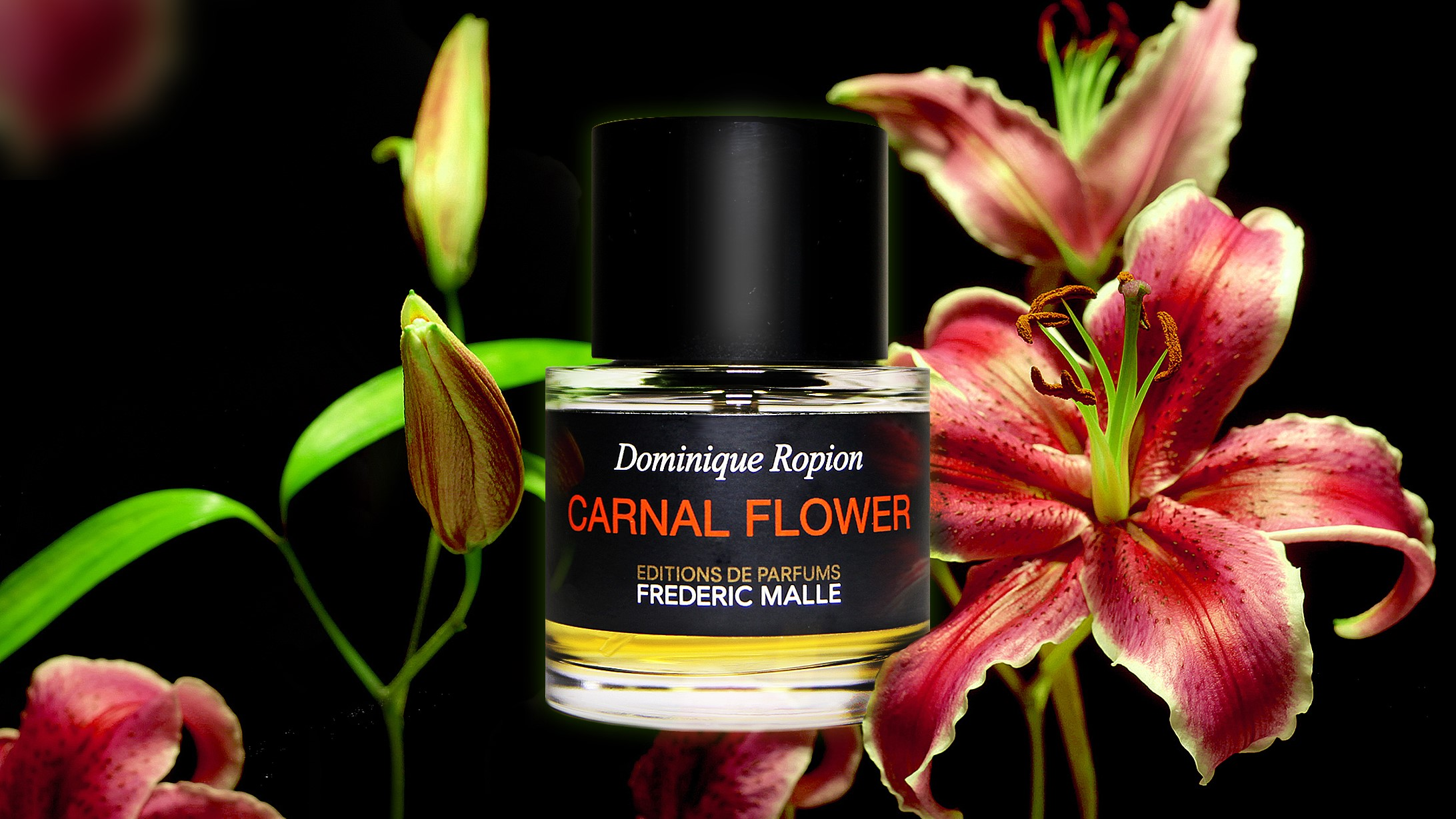 c08a9d03b2dad Frederic Malle – Carnal Flower eau de parfum review • Scentertainer